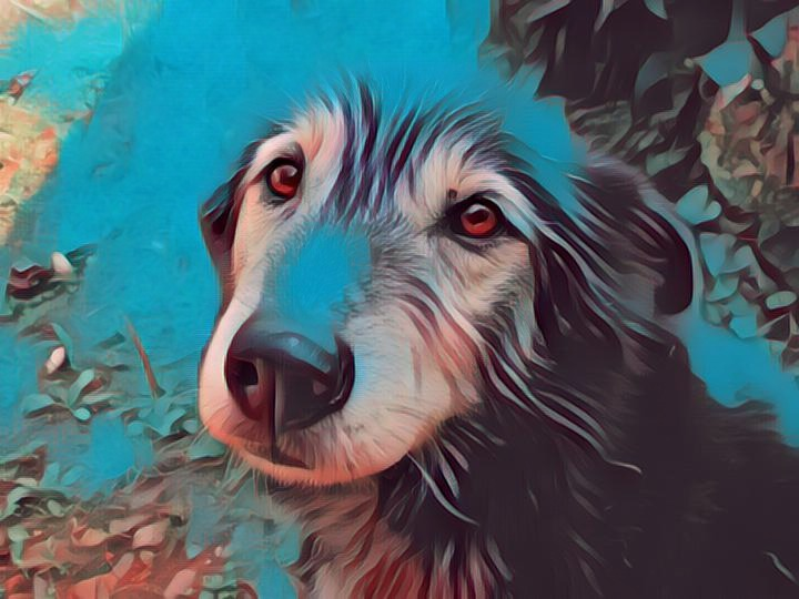old dog painting